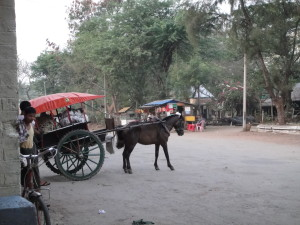 There are more horse carts than cars in this town...guess we'll take one to our guesthouse!