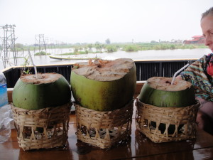 These coconuts are huge!